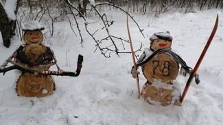 Оригинальную фотозону к Новому году обустроили грибановские общественники