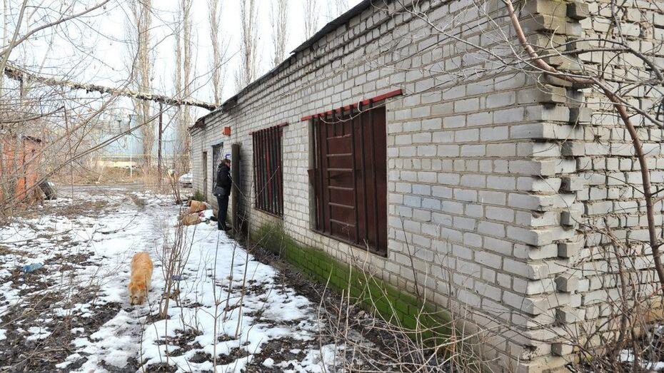 Мэрия отдала заброшенное здание приюту для бездомных животных