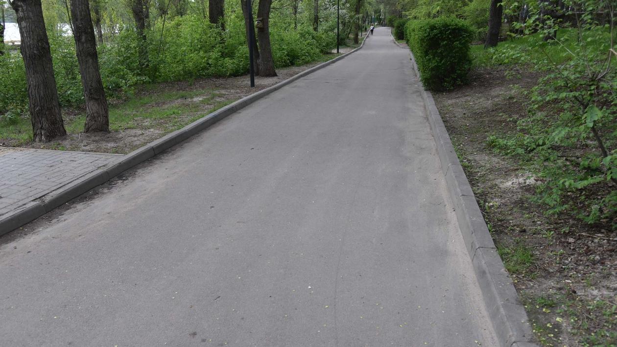 Безопасность и «Трасса здоровья». Что показали мэру Воронежа в обновляемом парке «Дельфин»