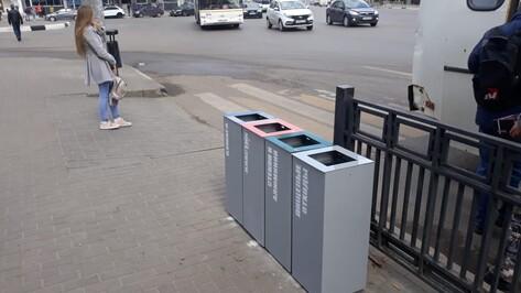 На улице Плехановской в Воронеже установят 92 урны для раздельного сбора мусора