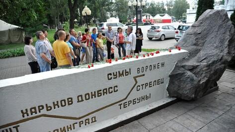 Участники исторической лекции в Воронеже собрали деньги на доску летчику Цветкову