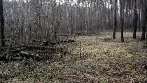 Пропавшего под Воронежем мужчину нашли мертвым