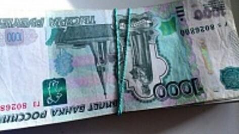 Главам сел в Воронежской области с 1 июня поднимут зарплату