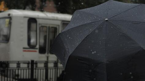 Мокрый снег и дождь не покинут Воронеж в выходные