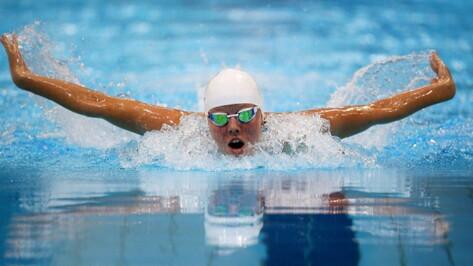Воронежские парапловцы привезли с чемпионата России 14 золотых медалей