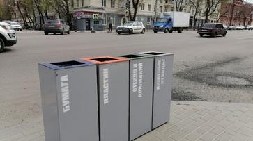 На воронежских улицах до конца года появятся 911 урн для раздельного сбора отходов