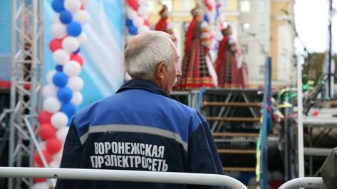Власти Воронежа простили «Горэлектросети» долги на 12,2 млн рублей