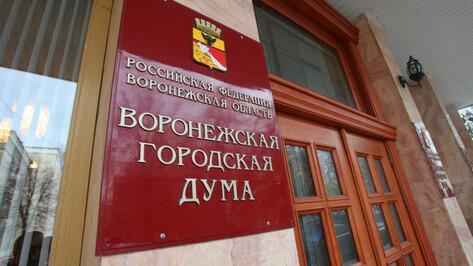 Гордума приняла дефицитный бюджет Воронежа