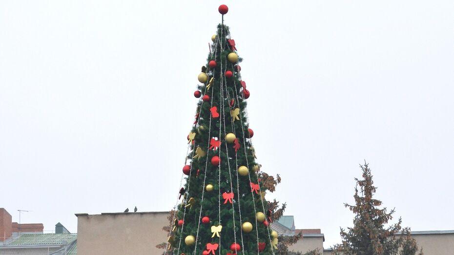 Главную елку Семилук защитит круглосуточная охрана