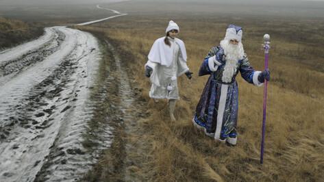 Метеорологи рассказали о погоде в Воронеже на Новый год