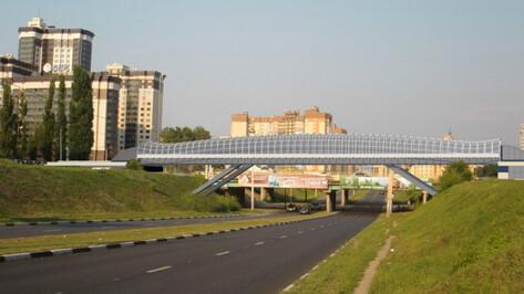 Обоснование скоростного рельсового транспорта Воронежа разработают к концу 2020 года