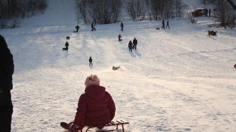 В Воронеже окончание новогодних выходных будет морозным и снежным