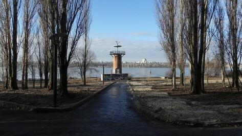 Воронежские власти направят до 265 тыс рублей на благоустройство парка «Дельфин»