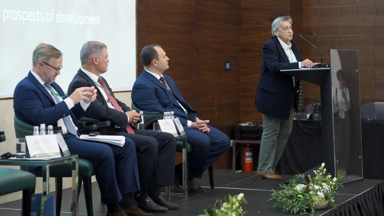 Эксперты конференции по зеленой инфраструктуре в Воронеже: «Озеленение экономит миллиарды»