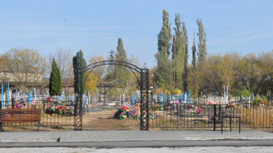 В Репьевке жители благоустроили старинное кладбище