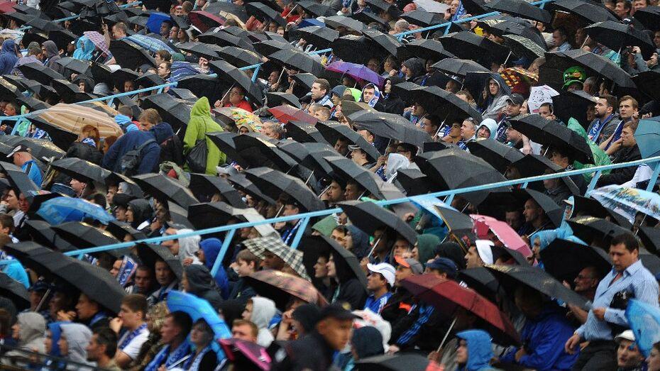 В Воронеж придут дожди и тепло на новой рабочей неделе