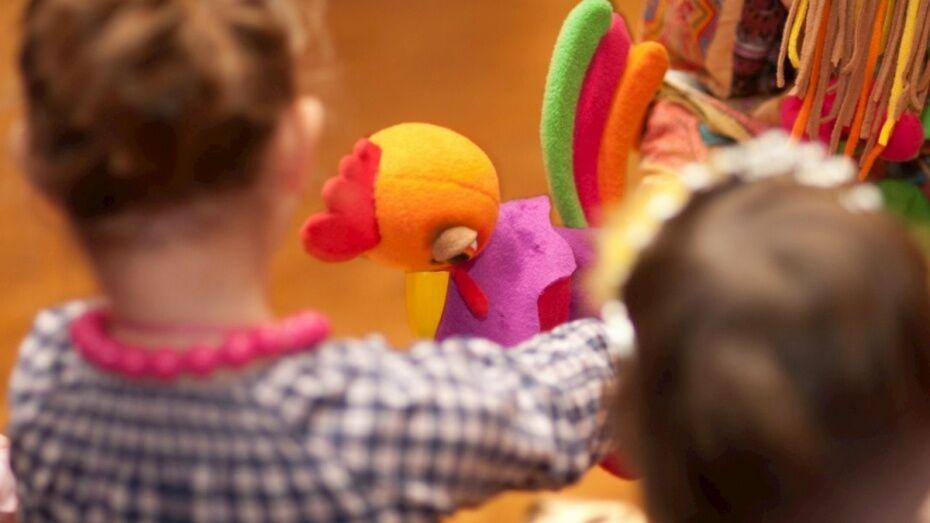 В Воронежской области до конца 2017 года откроют 8 детских садов