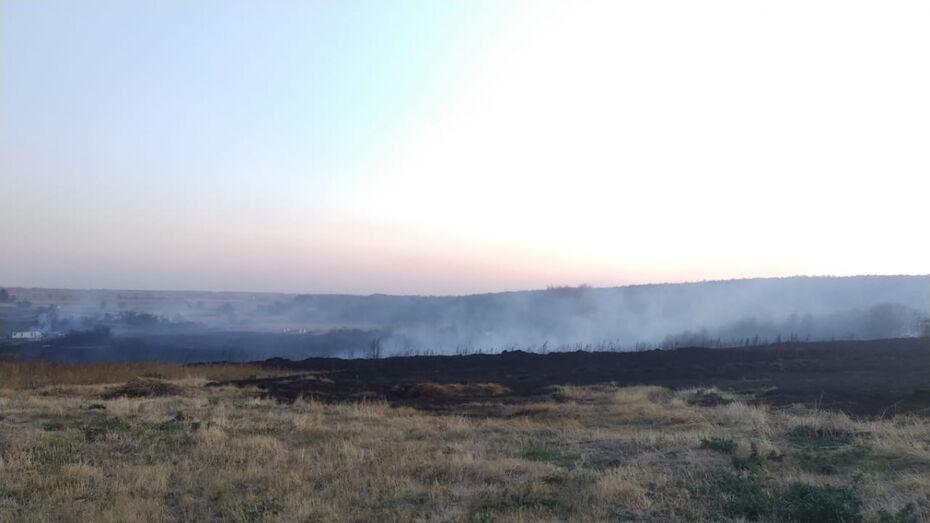 От пожара жилые дома в воронежском селе спас местный тракторист