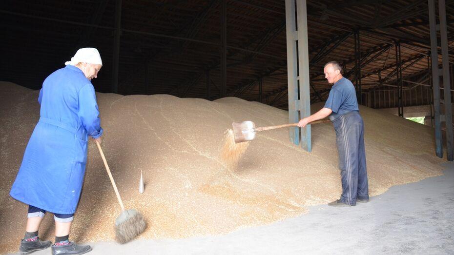 Верхнемамонские аграрии подготовили 110 складов к приемке нового урожая