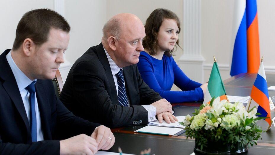 Ирландия поможет Воронежской области развить IT-сферу и анимацию
