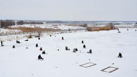 В Бутурлиновском районе прошли соревнования по подледному лову