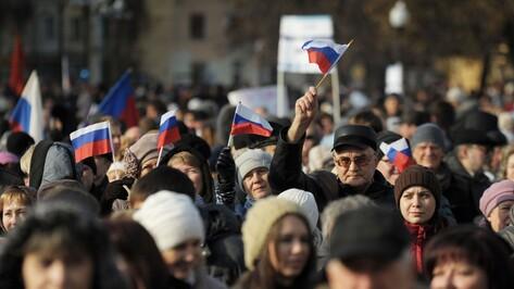 В День народного единства воронежцев призвали поддержать «украинских братьев»