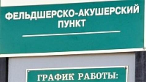 30 ФАПов в районах Воронежской области будут сданы летом текущего года