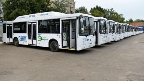 Мэрия Воронежа закупит 35 автобусов на газе за 305 млн рублей
