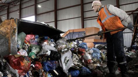 Раздельный сбор отходов внедрят во всех городах Воронежской области