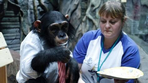Жительница Хохольского района освоила профессию дрессировщика шимпанзе
