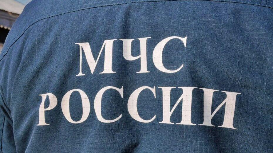 При пожаре в Воронежской области погиб 44-летний хозяин дома