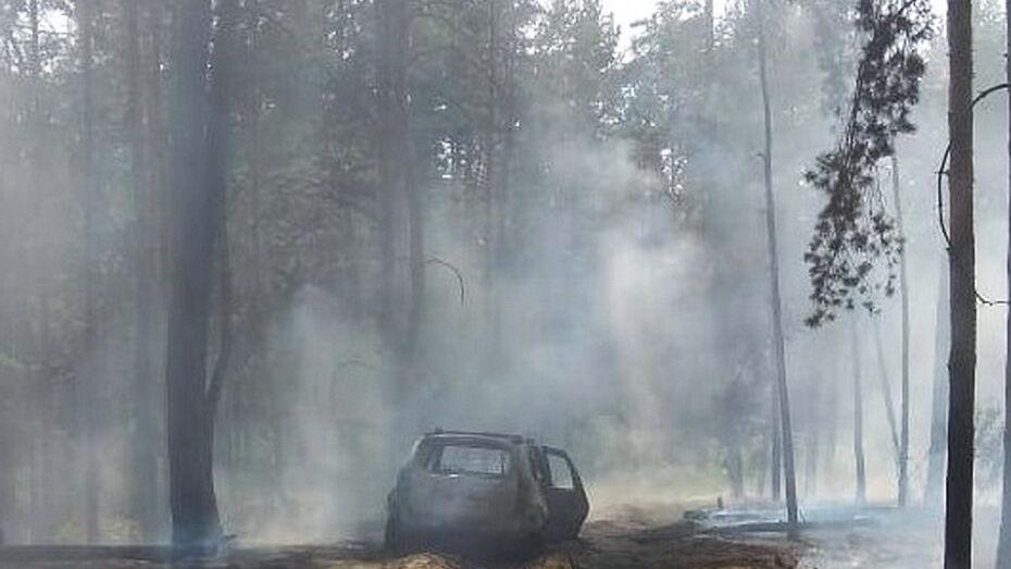 В Борисоглебске пострадавший в лесном пожаре пенсионер скончался в реанимации