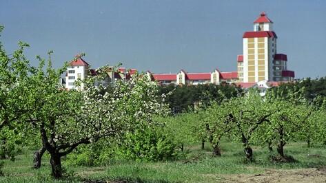 Воронежцев позвали навести порядок в яблоневом саду