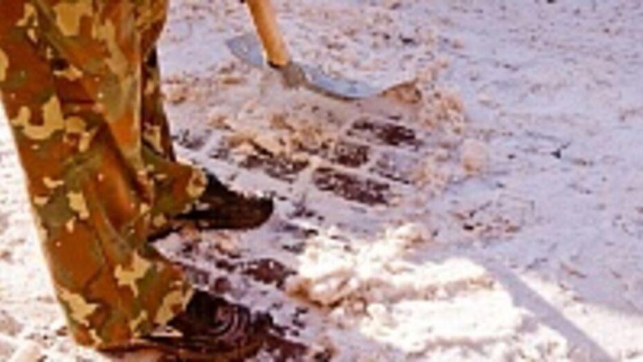 Власти Воронежа хотят поручить очистку тротуаров от снега специальной технике