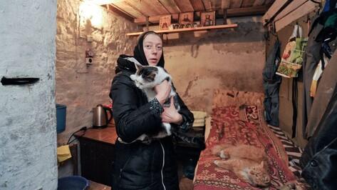 Воронежская монахиня нашла дом для семи тысяч бездомных котов