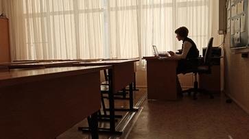 В Воронежской области организуют родительское собрание на тему учебы в пандемию