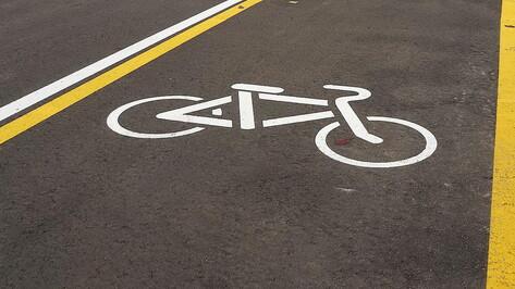 Велодорожку на улицах Острогожской и Краснознаменной в Воронеже сделают до конца 2022 года
