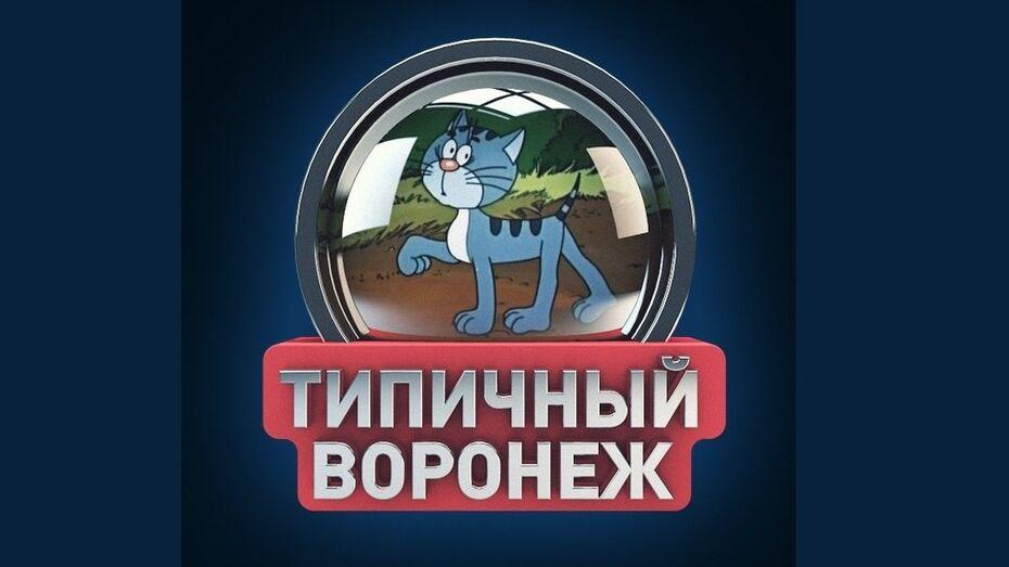Опрос РИА «Воронеж»: «Владелец