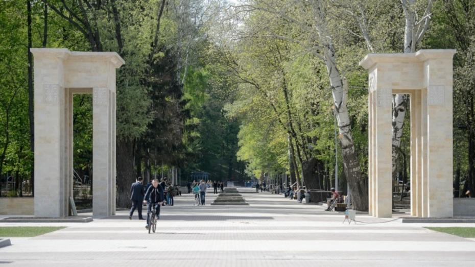 Вторая очередь реконструкции воронежского Центрального парка обойдется в 150 млн рублей