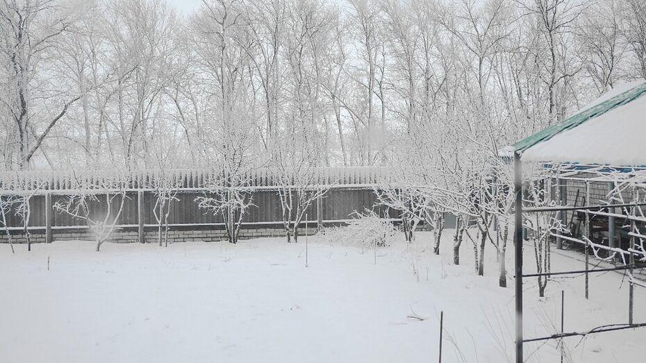 В Новохоперский район вернулась зима
