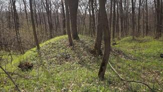 Поисковики нашли 2 места лежки пропавшего на границе Воронежской области  3-летнего ребенка