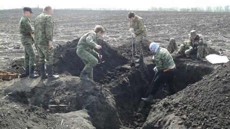 В Дубовке нашли две ямы с 208 останками жертв Большого террора