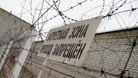 Боец Александр Емельяненко освободился из колонии в Воронежской области