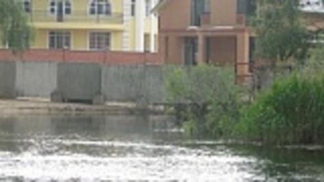 Рамонский районный суд обязал воронежского дачника снести незаконные постройки на берегу реки Воронеж