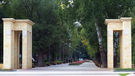 Из пруда в Центральном парке Воронежа слили всю воду