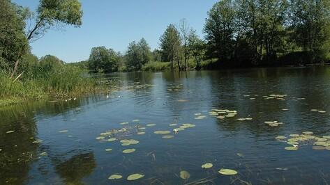 В 2021 году расчистят 3 км русла реки Усмань под Воронежем