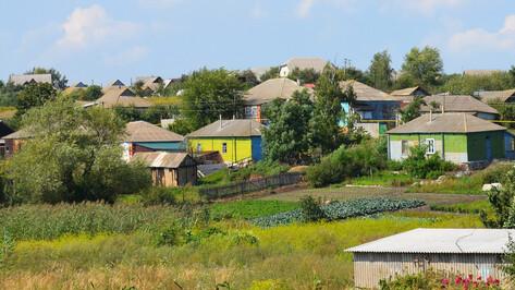 Ермоловка в Лискинском районе поборется за звание самого красивого села области