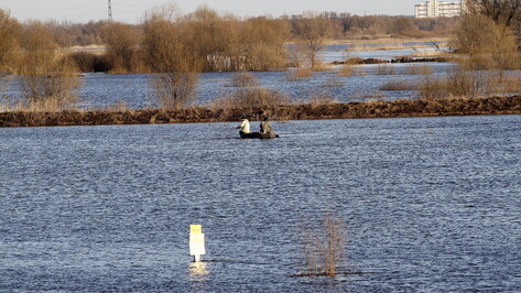 Экологи оценили состояние воронежской реки Усманка как удовлетворительное