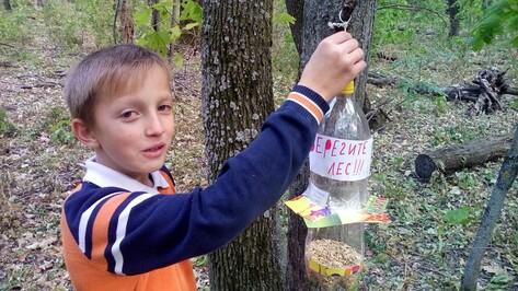 Россошанские школьники развесили в лесу кормушки для зверей и птиц