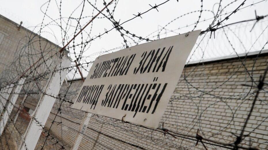 В Воронежской области мужчине дали 3 года колонии за угон и нарушение постановления суда